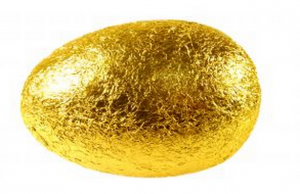 golden egg my road to financial freedom