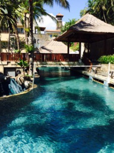 bali pool paradiso my road to financial freedom