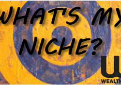 what is a niche? my road to financial freedom