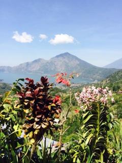 bali volcano my road to financial freedom