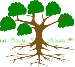 tree-309046_640